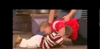 Springer midget fights